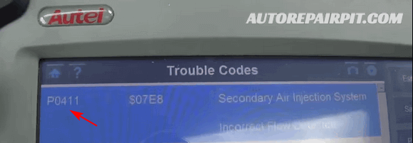P0411 - EVAP System Control Incorrect Purge Flow
